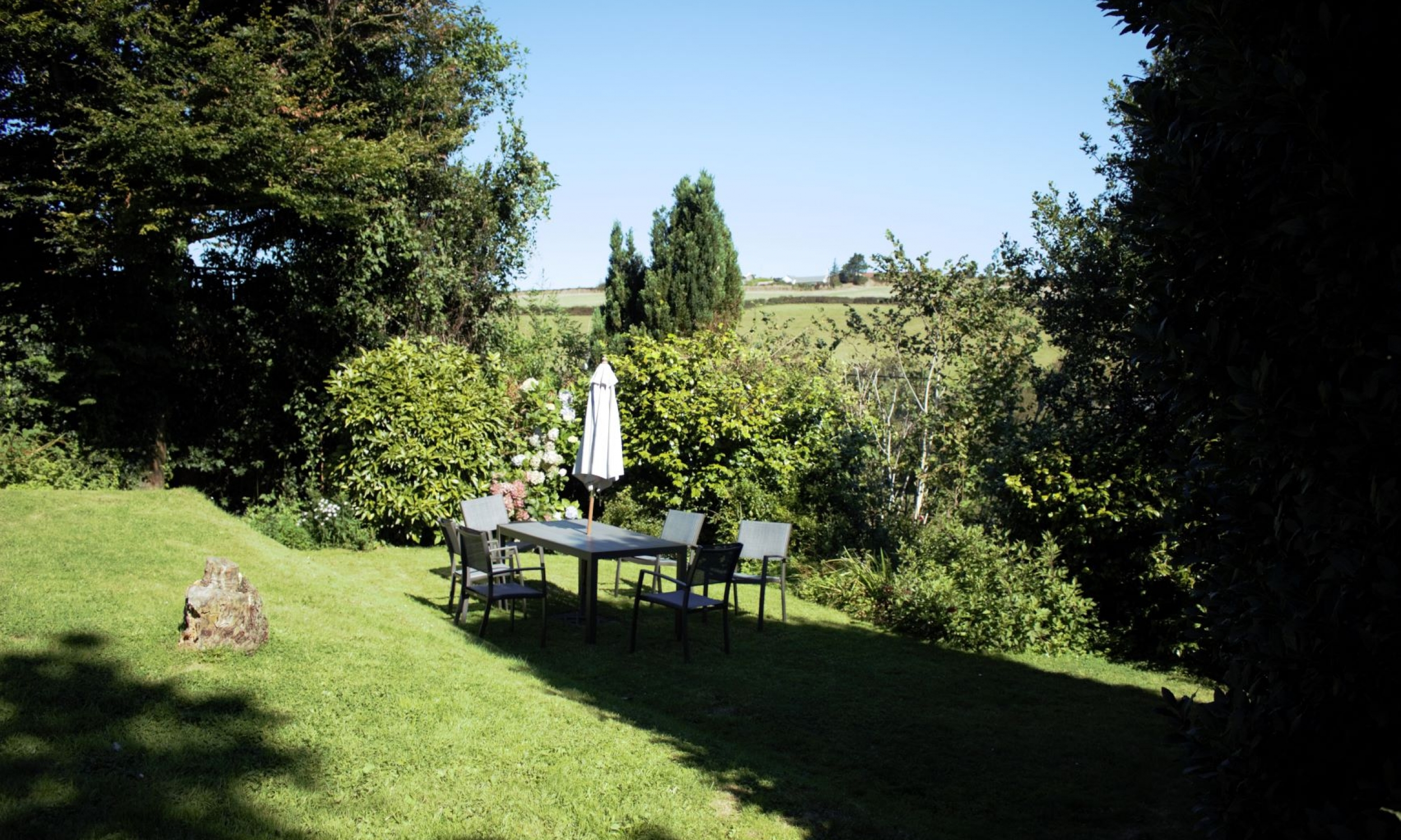 Osprey front garden